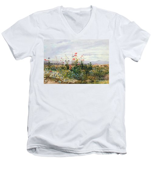 Wildflowers With A View Of Dublin Dunleary Men's V-Neck T-Shirt
