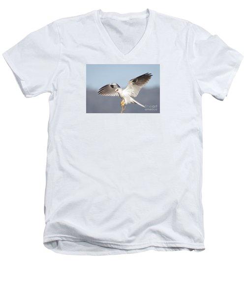 Wingspan Men's V-Neck T-Shirt by Alice Cahill