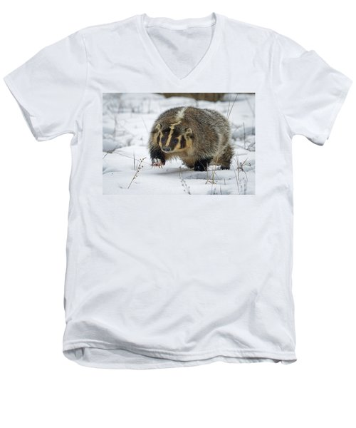 Men's V-Neck T-Shirt featuring the photograph Winter Badger by Jack Bell