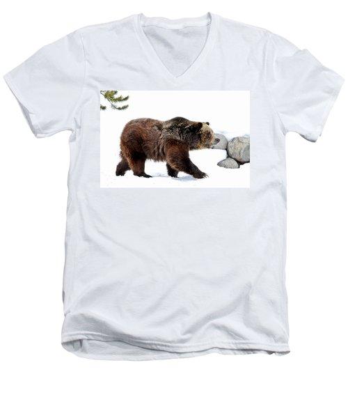 Winter Bear Walk Men's V-Neck T-Shirt