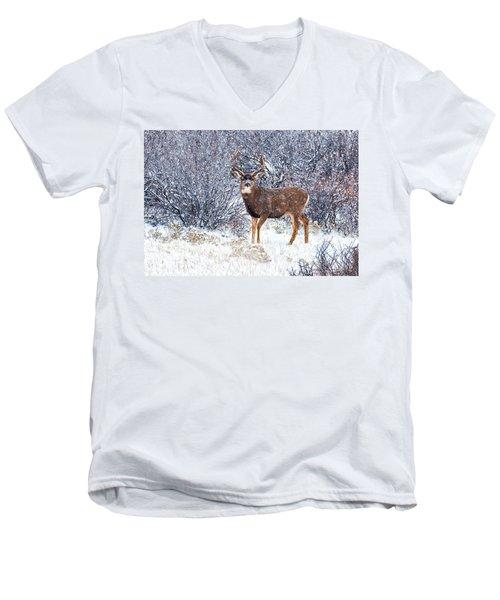 Winter Buck Men's V-Neck T-Shirt