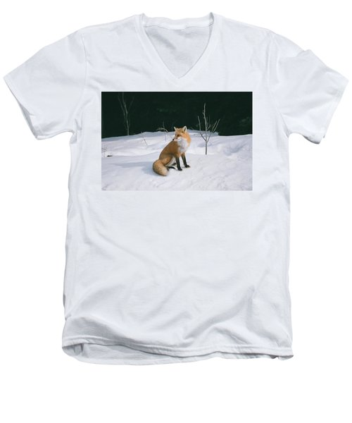 Winter Fox Men's V-Neck T-Shirt