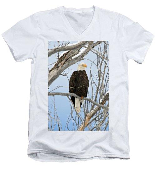 Winter Perch Men's V-Neck T-Shirt by Bob Hislop