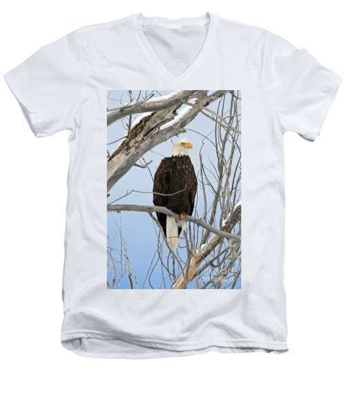 Winter Perch Men's V-Neck T-Shirt