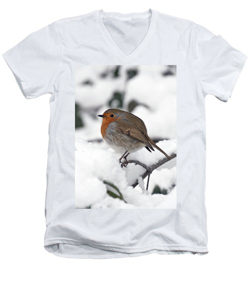 Winter Robin Men's V-Neck T-Shirt