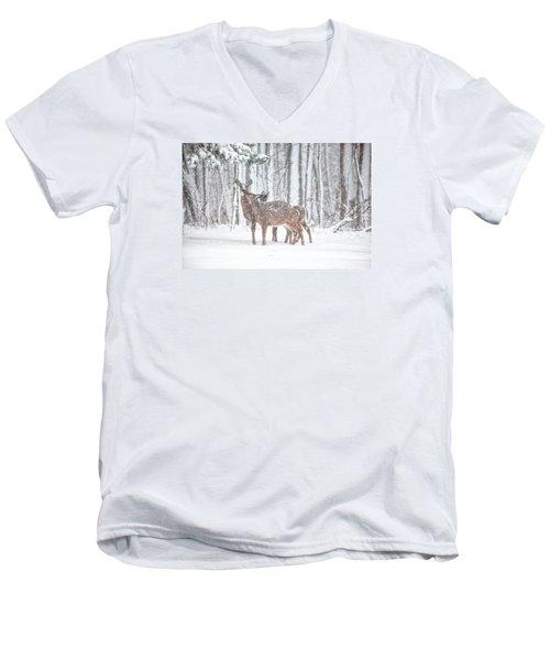 Winters Love Men's V-Neck T-Shirt by Karol Livote