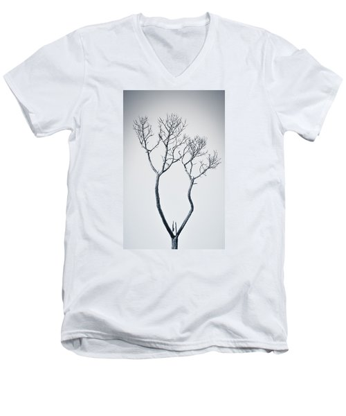 Wishbone Tree Men's V-Neck T-Shirt