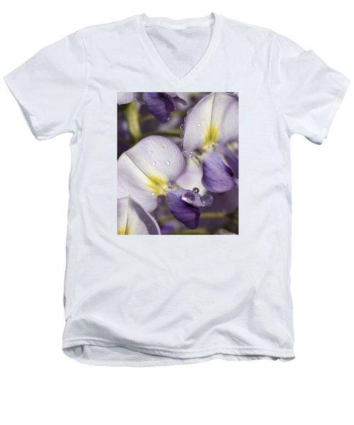 Wisteria Men's V-Neck T-Shirt by Richard Thomas