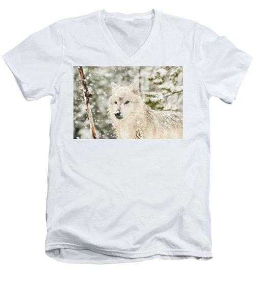 Wolf In Snow Men's V-Neck T-Shirt
