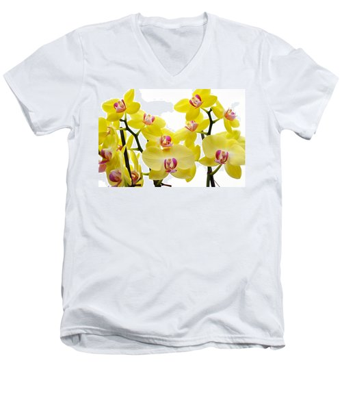 Yellow Beauties Men's V-Neck T-Shirt