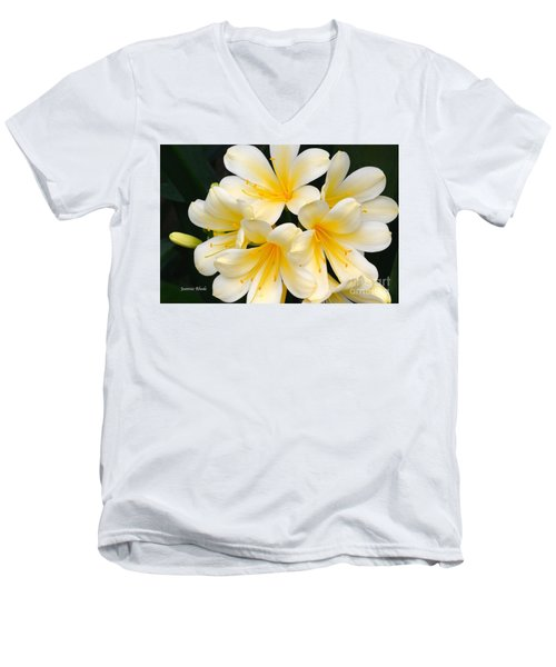Men's V-Neck T-Shirt featuring the photograph Clivia Yellow Flowers by Jeannie Rhode