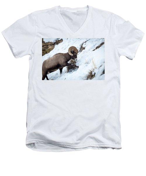 Yellowstone Bighorn Men's V-Neck T-Shirt