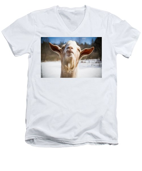 'yoda' Goat Men's V-Neck T-Shirt