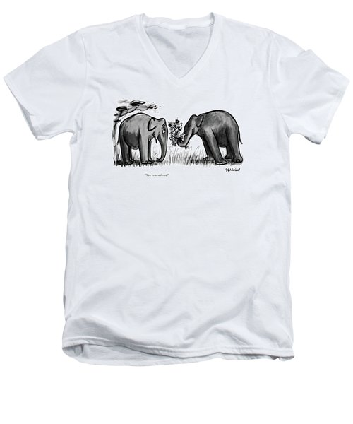 You Remembered Men's V-Neck T-Shirt