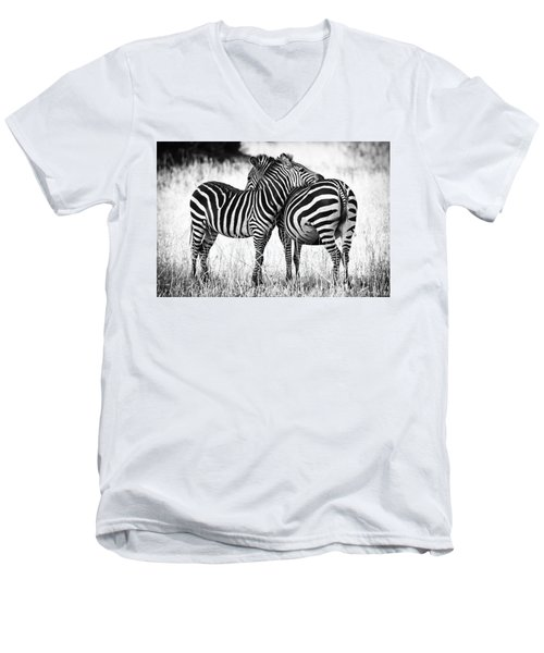 Zebra Love Men's V-Neck T-Shirt by Adam Romanowicz