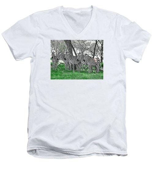 Zebras Men's V-Neck T-Shirt by Kathy Churchman