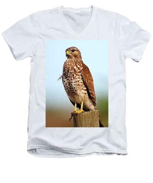 Portrait Of A Red Shouldered Hawk Men's V-Neck T-Shirt