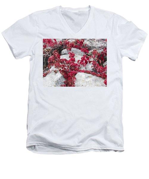 Autumn Color Is Red Men's V-Neck T-Shirt