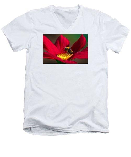 Men's V-Neck T-Shirt featuring the photograph Beebot by Stwayne Keubrick
