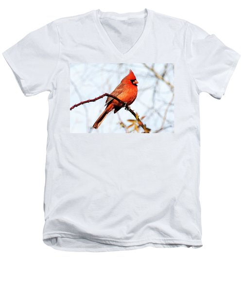 Cardinal 1 Men's V-Neck T-Shirt by Joe Faherty