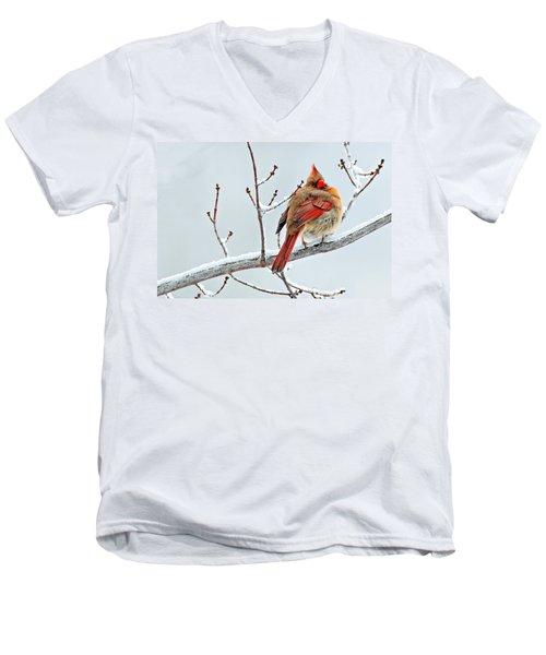 Cardinal I The Snow  Men's V-Neck T-Shirt