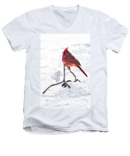 Men's V-Neck T-Shirt featuring the photograph Cardinal's Song by Tamyra Ayles