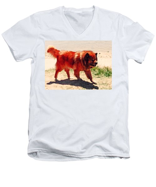 Chow Chow Men's V-Neck T-Shirt