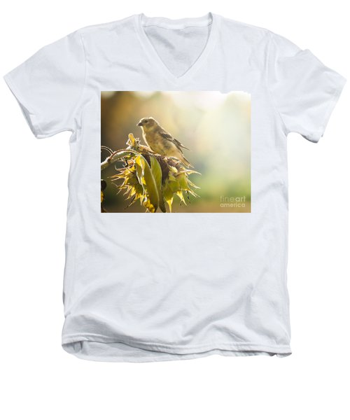 Men's V-Neck T-Shirt featuring the photograph Finch Aglow by Cheryl Baxter