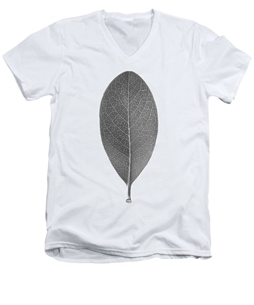 Indian Hawthorn Leaf Men's V-Neck T-Shirt