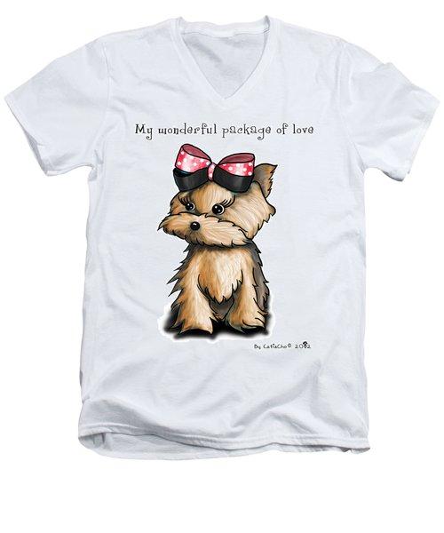 My Wonderful Package Of Love Men's V-Neck T-Shirt