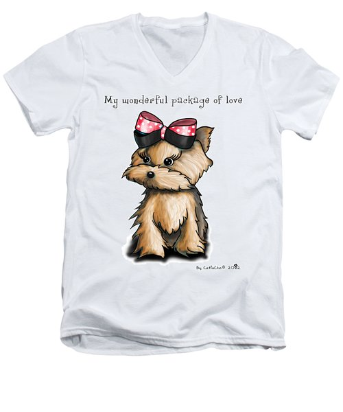 My Wonderful Package Of Love Men's V-Neck T-Shirt