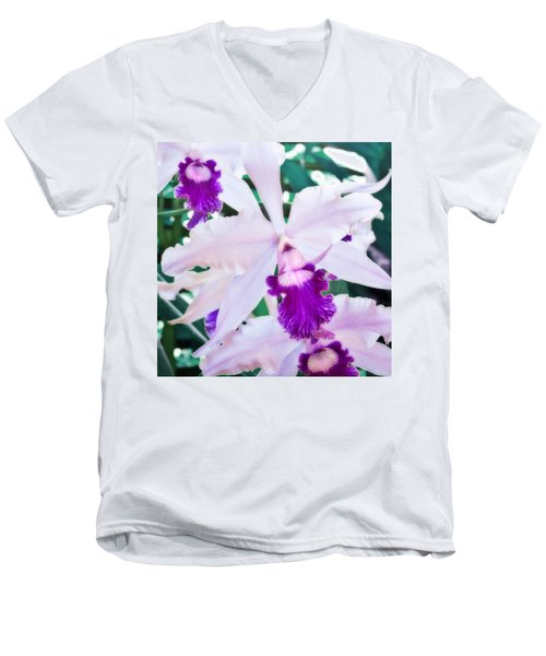 Men's V-Neck T-Shirt featuring the photograph Orchids White And Purple by Steven Sparks