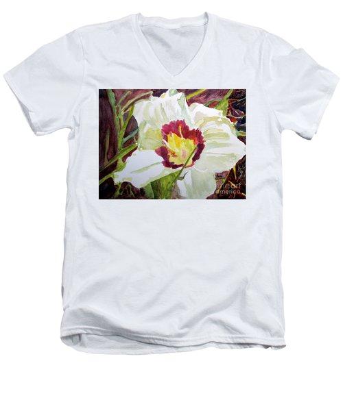 Pandora's Box Men's V-Neck T-Shirt