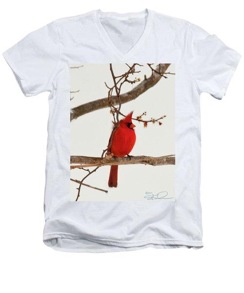 Righteous Cardinal Men's V-Neck T-Shirt