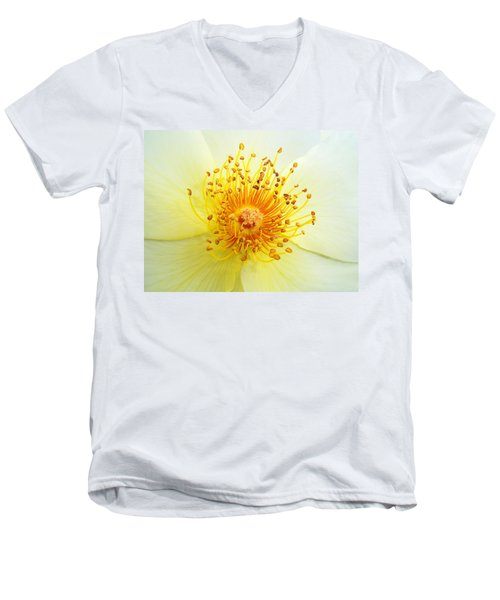 Rosa Golden Wings Men's V-Neck T-Shirt