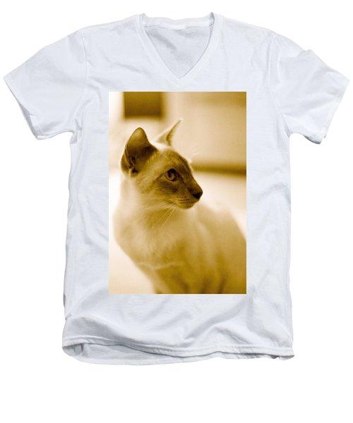 Siamese Feline Men's V-Neck T-Shirt