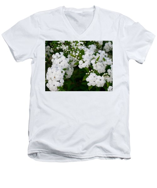 Men's V-Neck T-Shirt featuring the photograph Spirea Blooms by Maria Urso