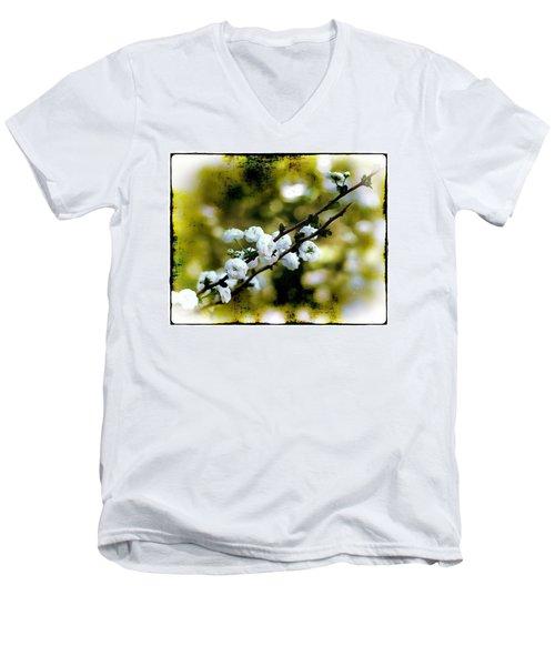 Spring Bough Men's V-Neck T-Shirt by Judi Bagwell