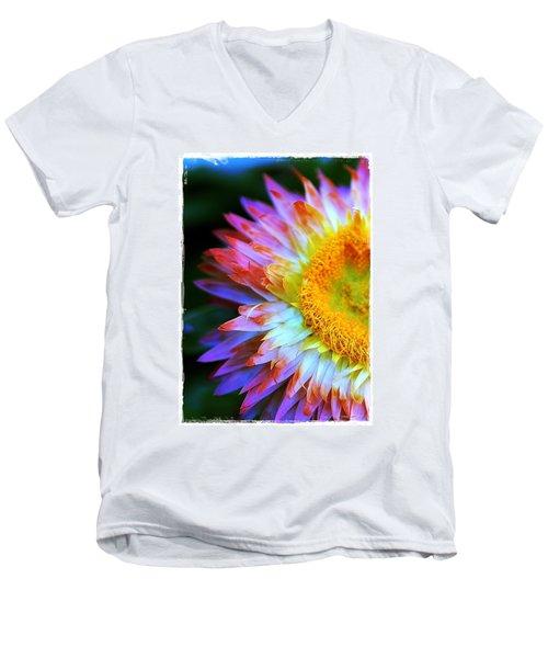 Strawflower Men's V-Neck T-Shirt by Judi Bagwell