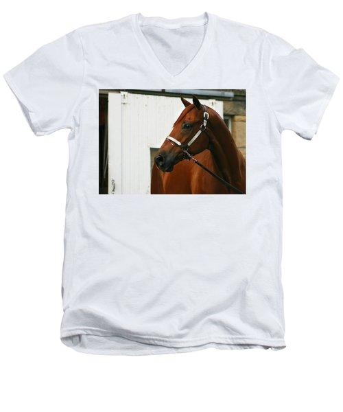 Stud Men's V-Neck T-Shirt