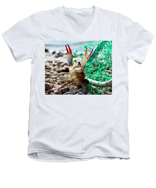Men's V-Neck T-Shirt featuring the photograph Crab Throw Me Something Mister by Luana K Perez