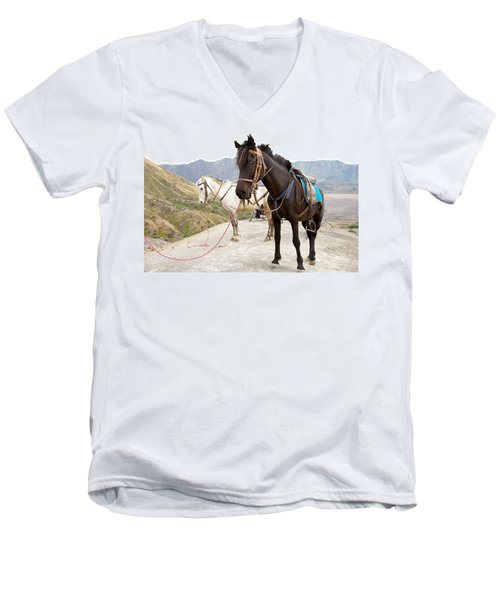 Men's V-Neck T-Shirt featuring the photograph Two Horses by Yew Kwang