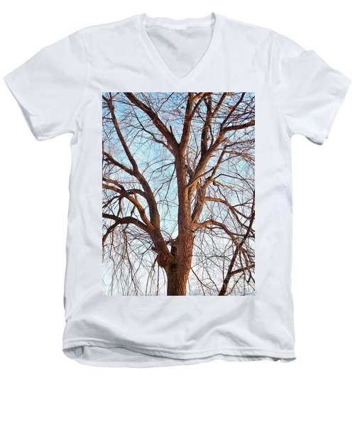 Men's V-Neck T-Shirt featuring the photograph Winter Light by Chalet Roome-Rigdon