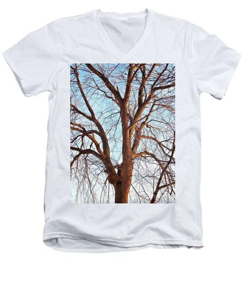 Winter Light Men's V-Neck T-Shirt by Chalet Roome-Rigdon