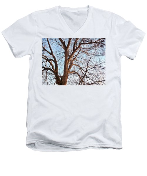 Men's V-Neck T-Shirt featuring the photograph Winter Sunlight On Tree  by Chalet Roome-Rigdon