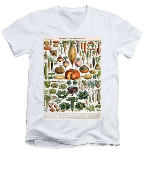 Illustration Of Vegetable Varieties Men's V-Neck T-Shirt by Alillot