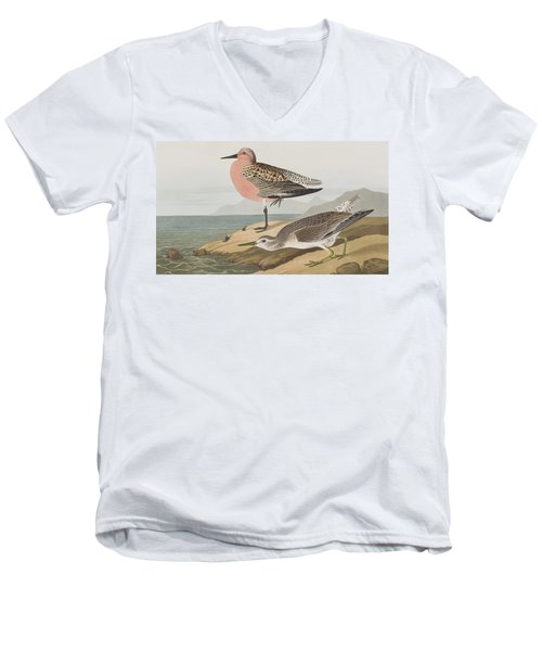 Red-breasted Sandpiper  Men's V-Neck T-Shirt