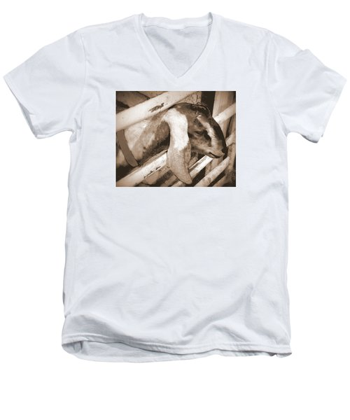 A Friend Men's V-Neck T-Shirt by Jodie Marie Anne Richardson Traugott          aka jm-ART