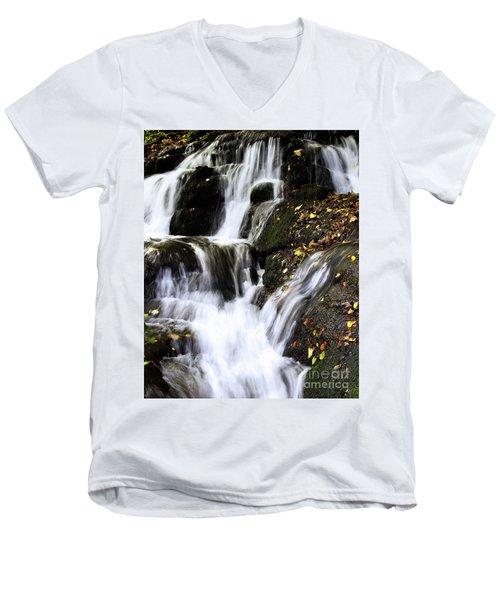 Badger Dingle Fall Men's V-Neck T-Shirt