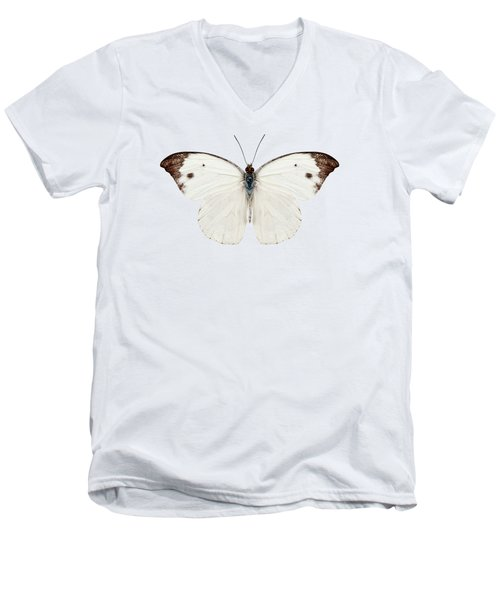 Butterfly Species Pieris Rapae Men's V-Neck T-Shirt